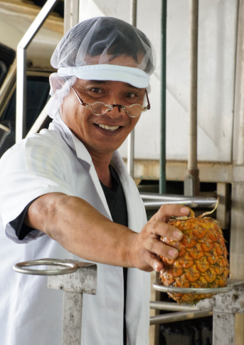 Employee Inspecting Pineapple
